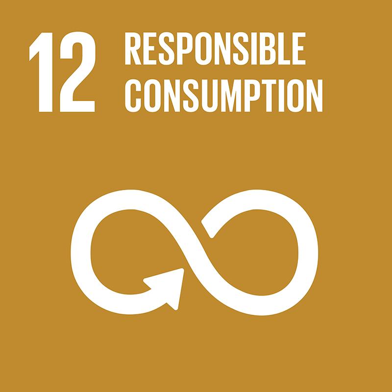 12-responsible-consumption
