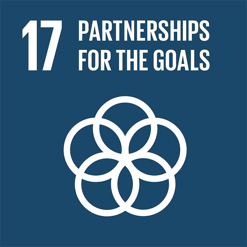 17-partnerships-for-the-goals