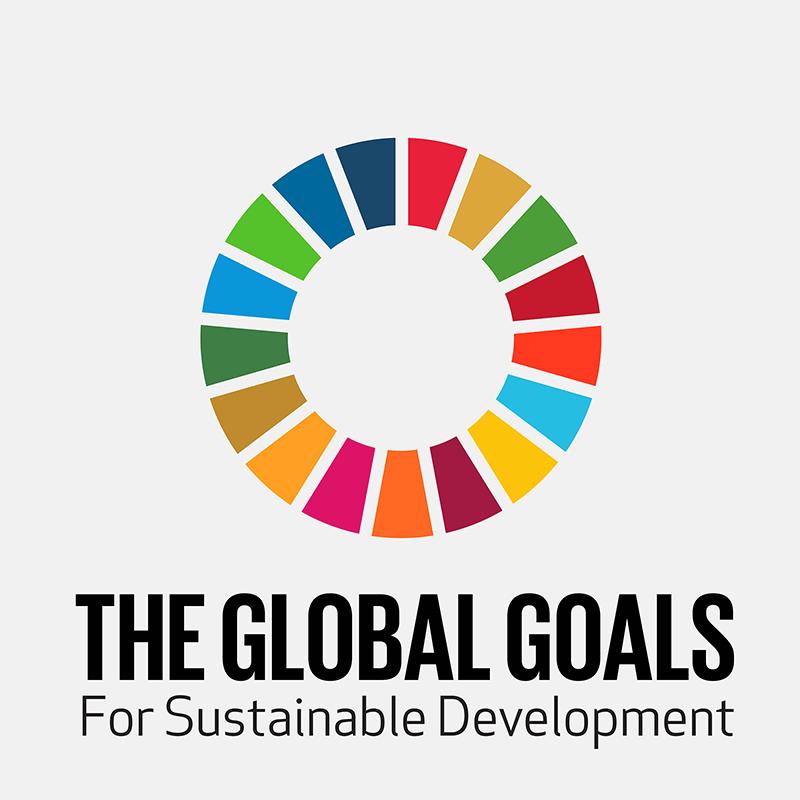 18-global-goals