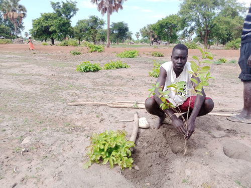 Tree Planting in Rumbek